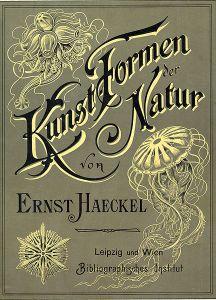 Ernst Haeckel - Kunstformen der Natur