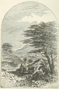 Grace Aguilar – The Vale of Cedars, frontispicio de la edición neoyorquina de 1851