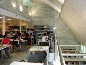 Las bibliotecas no pierden comba social