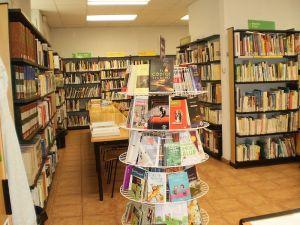 Las editoriales españolas sobreviven en las bibliotecas... de América
