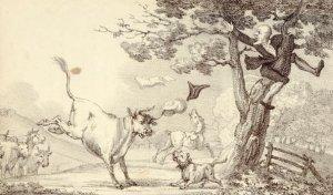 M. Gandais - Le Don Quichotte romantique, ou Le Voyage du Docteur Syntaxe à la recherche du pittoresque et du romantique (1821)