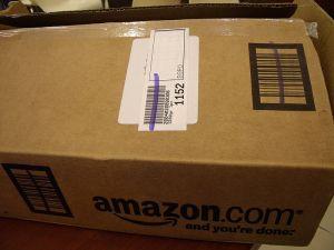 Amazon al desnudo