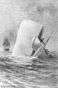 Herman Melville - Moby Dick, ilustración de A. Burnham Shute (1892)