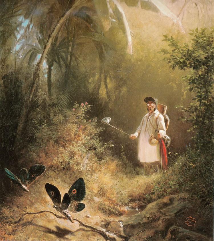 Carl Spitzweg – El Cazador de mariposas (1840)