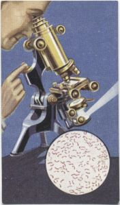 Microfotografía del bacilo del cólera, tarjetas publicitarias (S. XX)