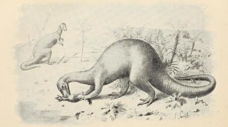 Henry Neville Hutchinson - Extinct monsters : a popular account of some of the larger forms of ancient animal life (1893)