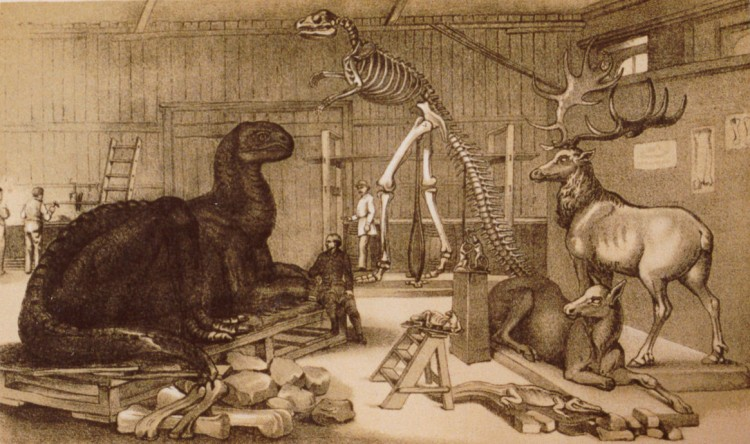Benjamin Waterhouse Hawkins - The palaeontological studio at the Central Park Museum with models of animals of ancient times, now restored from the fossils (187?)